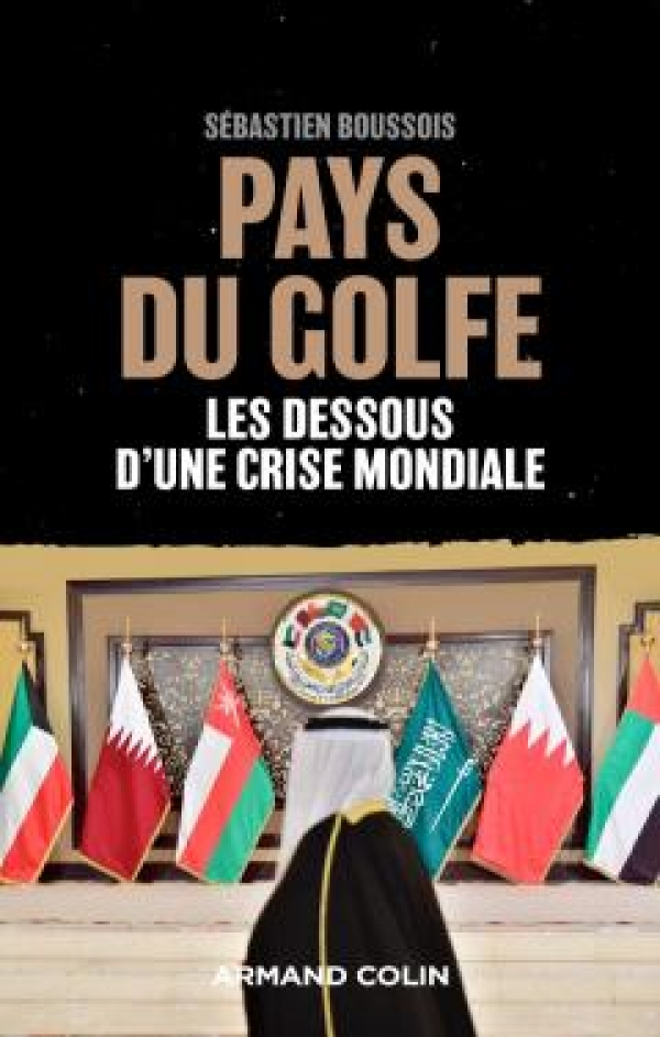 livre pays du golfe - les dessous d une crise mondiale